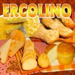 Ercolino